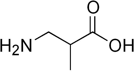 β-アミノイソ酪酸の化学構造