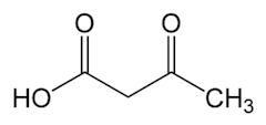 ケトン体のひとつであるアセト酢酸の化学構造