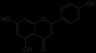 アピニゲンの化学構造
