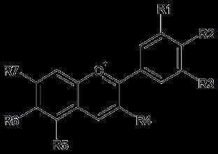 アントシアニジンの基本骨格