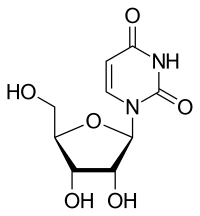 ウリジンの化学構造