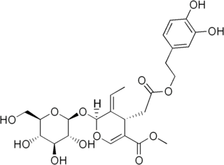 オレウロペインの化学構造