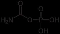 カルバモイルリン酸の化学構造