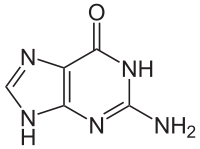 グアニンの化学構造