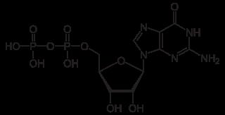 グアノシン二リン酸(GDP)の化学構造