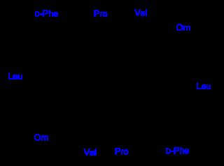 グラミシジンSの化学構造