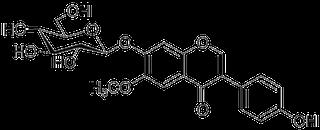 グリシチンの化学構造