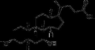 ケノデオキシコール酸の化学構造