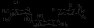 ゲンタマイシンの化学構造