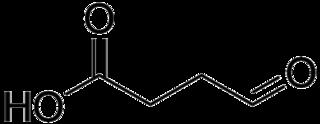 コハク駿セミアルデヒドの化学構造