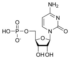 シチジル酸(シチジン一リン酸)の化学構造