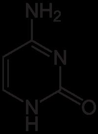 シトシンの化学構造