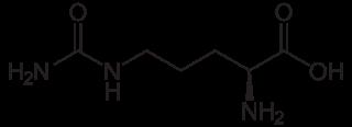 L-シトルリンの化学構造