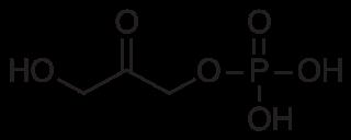ジヒドロキシアセトンリン酸の化学構造