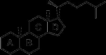 ステロイドの化学構造