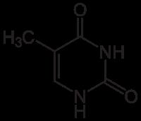 チミン(T)の化学構造