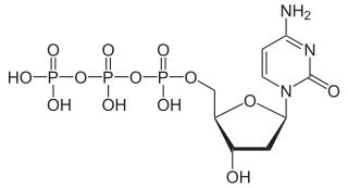 デオキシシチジン三リン酸の化学構造