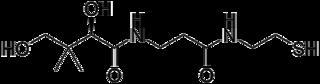 パンテテインの化学構造