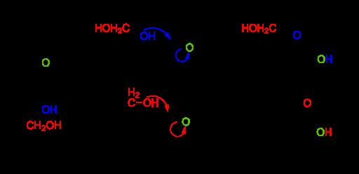 フルクトースの化学構造(六員環構造、鎖状構造、五員環構造)