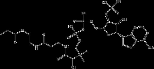プロピオニルCoAの化学構造