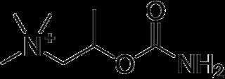 ベタネコールの化学構造