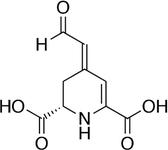 ベタラミン酸の化学構造