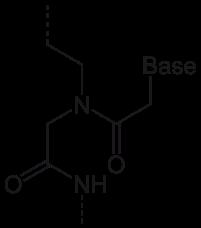 PNA(単量体)の化学構造