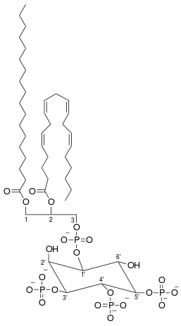 ホスファチジルイノシトール-3,4,5-三リン酸の化学構造