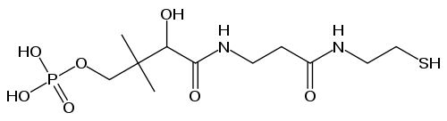 ホスホパンテテインの化学構造