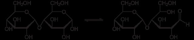 マルトースの化学構造と還元末端