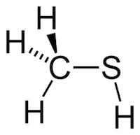 メチルメルカプタン(メタンチオール)の化学構造