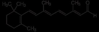 全トランス型レチナールの化学構造