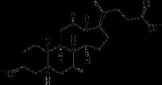 胆汁酸に共通する化学構造