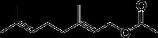 酢酸ゲラニルの化学構造