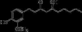 6-ジンゲロールの化学構造