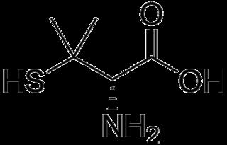 D-ペニシラミンの化学構造