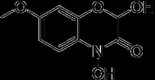 DIMBOAの化学構造